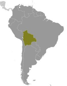 Bolivia in South America map