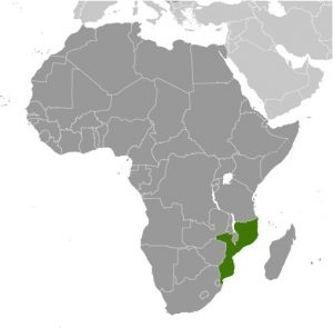 Mozambique in Africa map